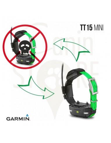 Échange standard MINI TT15 FR